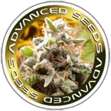 Logo Advanced Seeds