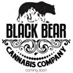Logo Black Bear Cannabis Company