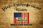 Logo Dixie Underground Blends