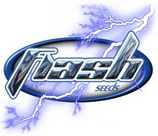 Logo Flash Seeds