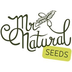 Logo Mr. Natural Seeds