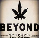 Logo Beyond Top Shelf