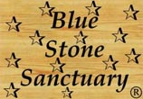 Logo Blue Stone Sanctuary