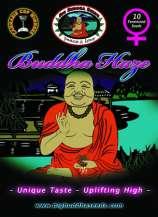 Buddha Haze