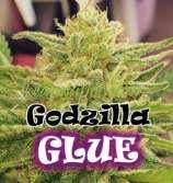 Godzilla Glue 4