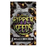 Wifi # 43 x White Widow