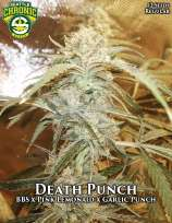 Seattle Chronic Seeds Death Punch