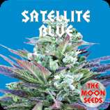 The Moon Seeds Satellite Blue