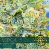 Medical 49