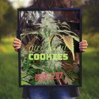 Bild von JONEYBIGWEED (Girl Scout Cookies)