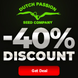 40% OFF ON DUTCH PASSION SEEDS