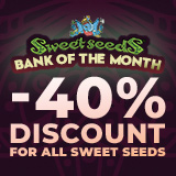 40% OFF SWEET SEEDS!